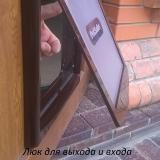 Люк для животных в дверь